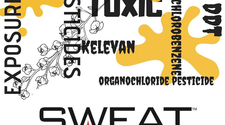 Toxic Accumulation of Pesticides